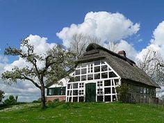 Ferienhaus auf einer Elbinsel zwischen Cuxhaven und Hamburg.