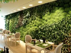Parede divisora de ambientes totalmente forrada de samambaias, devido à localização da TV, foram usadas plantas artificiais.
