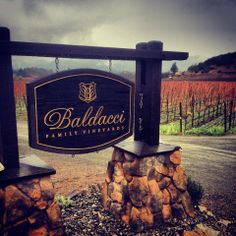 Nothing like a good rain to soak the Napa Valley vineyards and a pour of wine to warm our hearts! A great view from Baldacci Family Vineyards this morning.