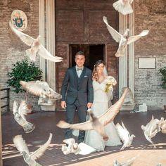 Fly wedding