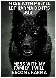 wolf don't mess with my family or friends - Google Search