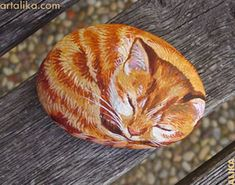 painted rocks: Sleeping orange tabby kitten