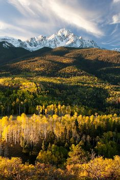Colorado autumn by Gritty Lens on 500px