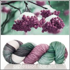 Expression Fiber Arts, Inc. - WINTER BERRIES SUPERWASH DEWY DK YARN - WINTER BERRIES - deep berry plum, evergreen and ivory
