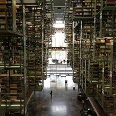 ヴァスコンセロス図書館 「死ぬまでに行ってみたい世界の図書館15」 トリップアドバイザー