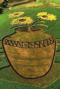 Farming & Agriculture: If Van Gogh Were A Farmer