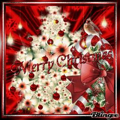 Red Ornament Merry Christmas Quote christmas merry christmas christmas quotes merry christmas quotes christmas quotes and sayings Merry Christmas Animation, Holiday Gif, Merry Christmas Quotes, Merry Christmas Greetings, Christmas Time, Christmas Signs, Animated Christmas Pictures, Merry Christmas Pictures, Holiday Pictures