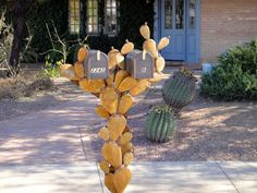 Prickly Pear Mailbox by Abatecola Metal Sculptor Unique Mailboxes, Metal Mailbox, Cactus, Mailbox Ideas, Mail Boxes, Creative, Pear, Design Ideas, Frame