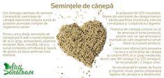 Hemp Seeds @DeliciiSanatoas
