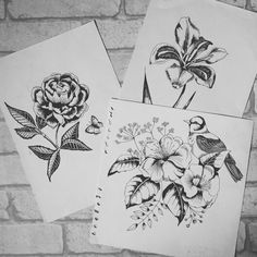 Floral and bird illustration sketchbook, pen drawings, kayleigh jayne design