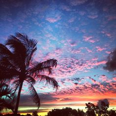 Statigram – Instagram webviewer | We Heart It