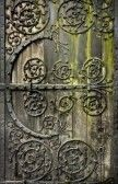 Old door with moss.