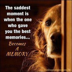My heart is broken!!