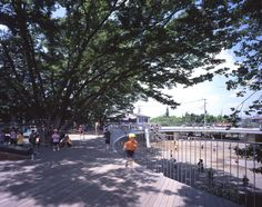 The roof deck of the Montessori School Fuji Kindergarten in Tokyo, Japan, has even allowed for three tall zelkova trees to be preserved, providing some shade on one side of the deck; designed by Tezuka Architects; photo by Katsuhisa Kida Japan Architecture, Landscape Architecture, Architecture Design, Fuji, Takaharu Tezuka, Kindergarten Design, Through The Roof, Roof Deck, Construction