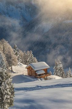 Forest Cabin ~ Switzerland