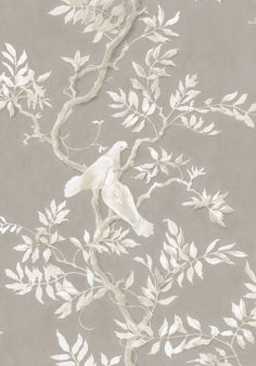 Doves Fabrics from our Big Prints range