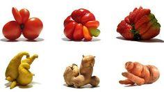Gueules cassées - Fruits et légumes moches, on vous aime aussi ! | Jardin et Maison