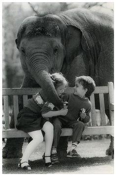 ❤ Elephant Hugs ♥
