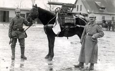 German pack horse carrying a machine gun. WWI