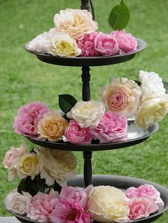Layer flowers using a cake stand - in this case, English roses.  Ideas for flower arranging.