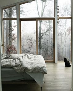 ideas tree house bedroom apartment therapy for 2019 Dream Rooms, Dream Bedroom, Home Bedroom, Bedroom Decor, Bedrooms, Bedroom Apartment, Bedroom Ideas, Apartment Layout, Bedroom Chair