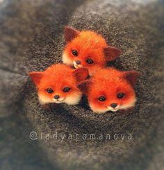 Сцяна Baby Animals Super Cute, Cute Little Animals, Cute Funny Animals, Cute Cats, Baby Animals Pictures, Cute Animal Pictures, Felt Animals, Animals And Pets, Pet Raccoon