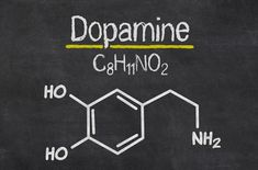 Dopamine: meer geluk als dopamine in balans is Córtex Cerebral, Alzheimer's Symptoms, Quit Drinking, Chemical Formula, Formula 1, Dealing With Stress, Chronic Fatigue, Alzheimers, Dna Tattoo