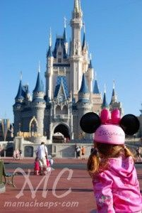 Walt Disney World: Tips and Tricks for Exploring the Magic Kingdom with a Toddler