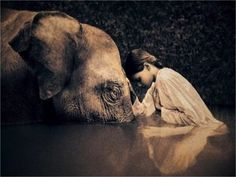 """""""Our prime purpose in this life is to help others. And if you can't help them, at least don't hurt them. the Dalai Lama (Photography: Gregory Colbert Dalai Lama, Namaste, Foto Picture, Sweet Picture, Elephant Love, Elephant Elephant, Elephant Quotes, Elephant Artwork, Elephant Poster"""