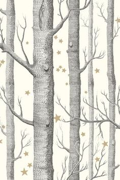 Cole  Son - Whimsical Collection - Woods  Stars - Natural (Back of cupboard)