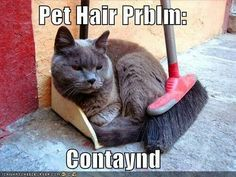 Pet hair contained