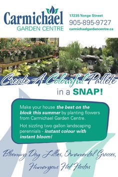 snapd Newmarket is a FREE monthly print publication and website specializing in a Yonge Street, Community Events, Perennials, Planting Flowers, Grass, Bloom, Herbs, Landscape, Garden