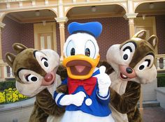 Donald Duck with Chip and Dale