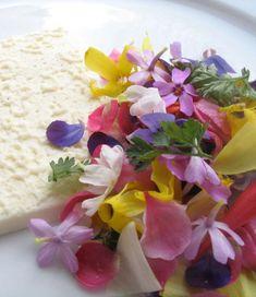 Spring flower salad, elderflower dressing, and almond milk cream