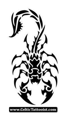 Do you want to ink scorpio symbol tribal tattoos? Find the best scorpio symbol tribal tattoos with help of us. We have seen a majority of people prefer to get tribal scopio symbol tattoos then any other astrological and tribal designs. Tribal Scorpion Tattoo, Tribal Tattoos, Hai Tattoos, Tribal Drawings, Tattoo Design Drawings, Tribal Tattoo Designs, Tattoo Sketches, Body Art Tattoos, Tattoos Skull
