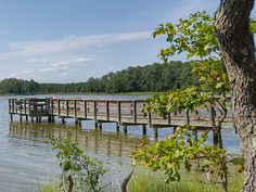 There is so much to explore at Belle Isle State Park in Virginia