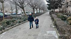 Księga Ziół: Takie rzeczy tylko w Polsce Sidewalk, Outdoor, Outdoors, Side Walkway, Walkway, Outdoor Games, The Great Outdoors, Walkways, Pavement