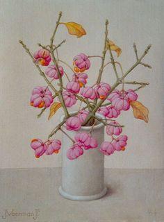 Voerman jr. J.    Vaasje met kardinaalsmuts, olieverf op doek op schildersboard 24,1 x 18,0 cm, gesigneerd l.o. en gedateerd '64 r.o.