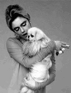Edie Sedgwick and Pekingese Edie Sedgwick, Andy Warhol, Anthony Kiedis, Lauryn Hill, Francis Bacon, Patti Smith, Carl Jung, Freddie Mercury, David Bowie