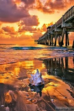 Juno Beach Pier, Florida Spent many a days at this beach!