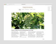 Trevisiol spumanti website #okcs #webdesign #web #graphicdesign