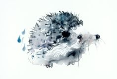 Hedgehog - A4 giclee archival print,original illustration,art painting, watercolor illustration (gouache)cute animals zen