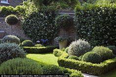 small pretty garden