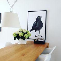 Photo ft. a Tolomeo from @irma.terpstra on Instagram : De tafel is weer opgeruimd en nu lekker op de bank hangen! #lohne_interior84#binnenkijken#interieurdesign#interieurinspiratie#interieurinspiratie#westelm#wohnkonfetti#interior4all#ilovemyhome#myhome2inspire#nordicdesign#norskehjem#danishdesign#skandinaviskehjem#interior_and_living#instahome#artemide#eames#maartjevandennoort#vitra#vitratoolbox#interiorwarrior#whiteinterior#whiteliving#witinterieur#blackbird#merel