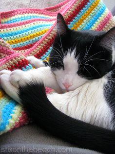 kitty loiter, single crochet stripe blanket, stixonthebeach blog