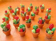 Cactus en piedras