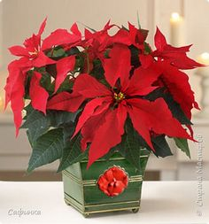 Мастер-класс Новый год Моделирование конструирование Мастер-класс по созданию волшебного цветка Пуансетия Рождественская звезда  Фоамиран фом  22