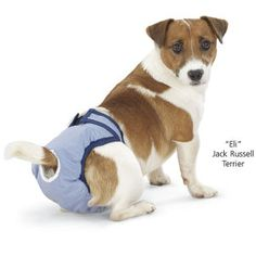 PoochPants Reusable Dog Diaper - Dog Beds, Gates, Crates, Collars, Toys, Dog Clothing & Gifts