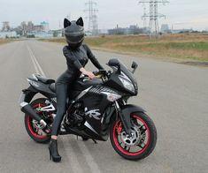 Cat Motorcycle Helmet …