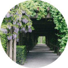 UBC Botanical Gardens - Vancouver Botanical Gardens, Vancouver
